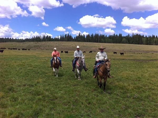Rainbow Trout Ranch Colorado