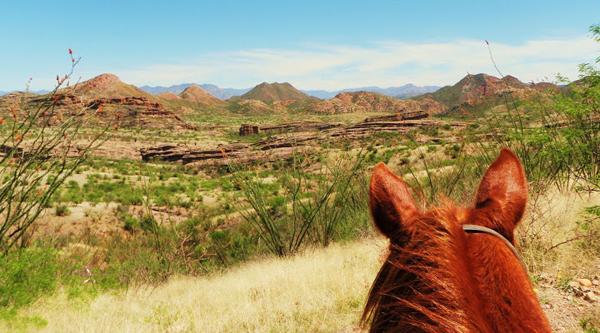 rancho los banos mexico horse riding