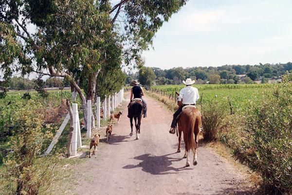 Rancho las Cascadas horse riding