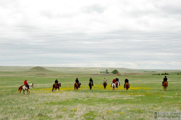 range riding colorado cattle company