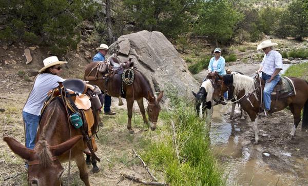 horseback riding new mexico petroglyph