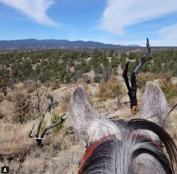 riding in the gila national forest