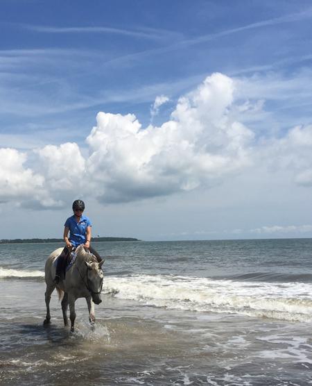 horseback riding on the beach daufuskie island south carolina