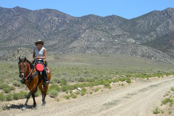 horseback riding nevada discovery trail
