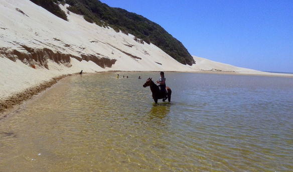 riding in the water in south africa