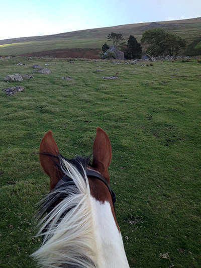 riding where War Horse filmed in the UK