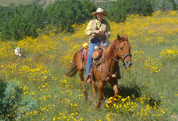 riding in yellow flowers nm