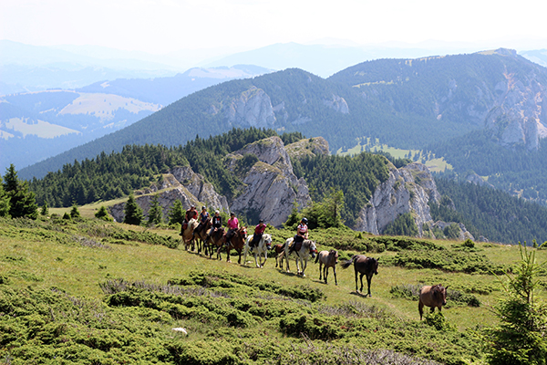 Romania horseback riding