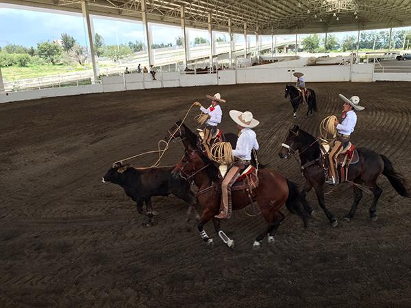 mexico roping charro vicente fernandez ranch