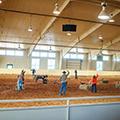 Resort at Paws Up Cowboys Roping
