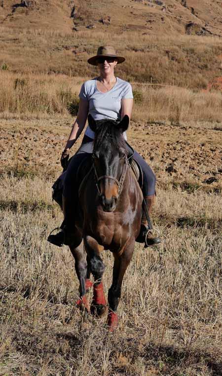 ex-racehorse-retrained-as-safari-horse