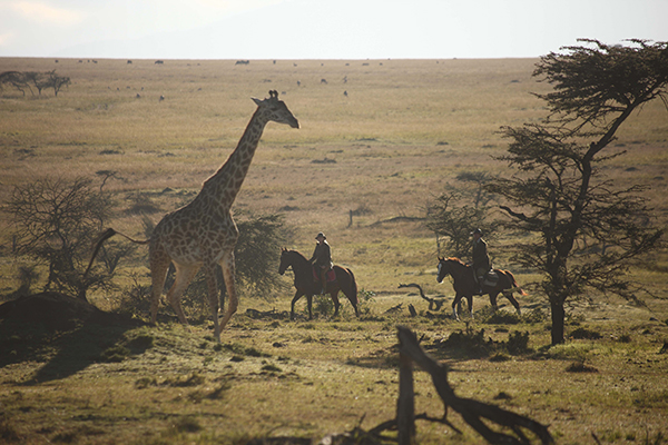 Safaris Unlimited Kenya horseback