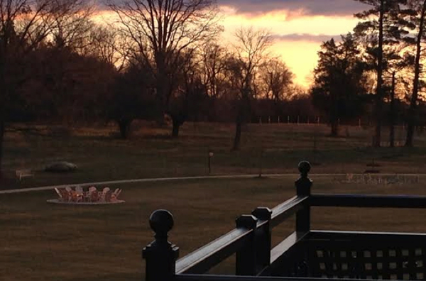 salamander farms sunset