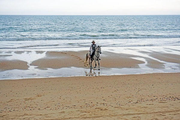 Horseback Riding Atlantic Coast Spain