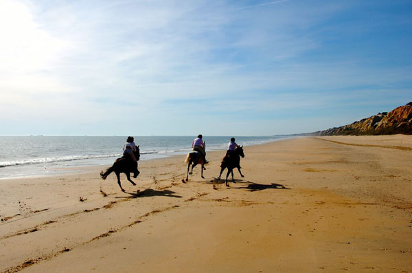 Atlantic Coast Horseback Riding on Beach