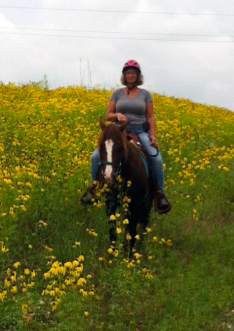 shaker village horseback wildflowers