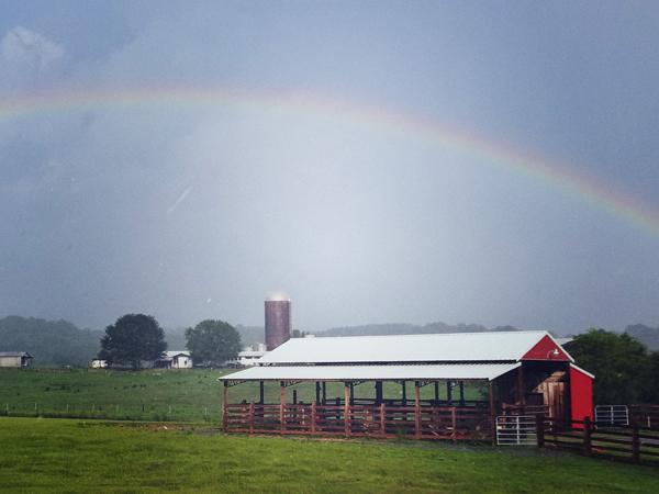rainbow over dairy farn vincent alabama