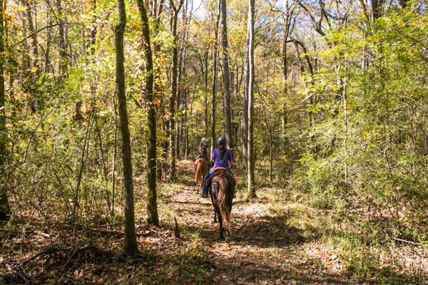 women horseback riding through woods in alabama