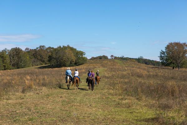 group trail rides on open range trail shel clair farms