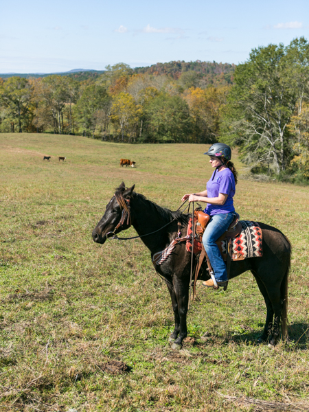 woman rides young horse through cow pasture