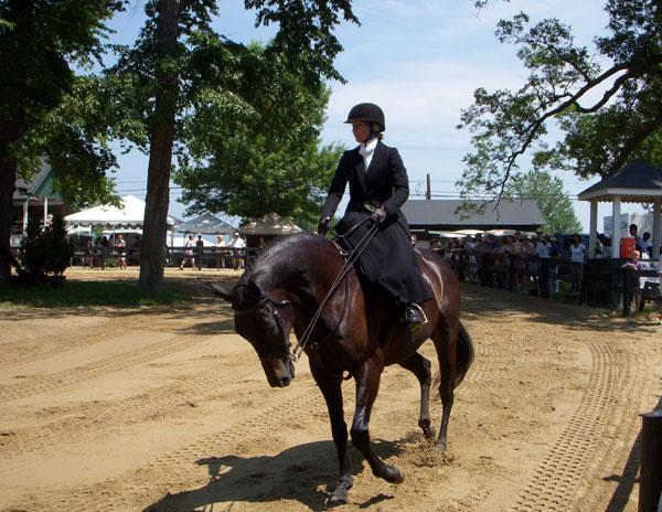 sidesaddle upperville horse show virginia