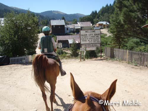 silver city horseback riding