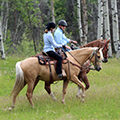 Siwash Lake Ranch Romance Package