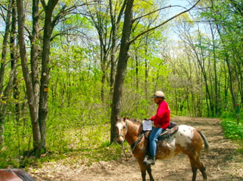 Southern Kettle State Forest Wisconsin Horse Trails