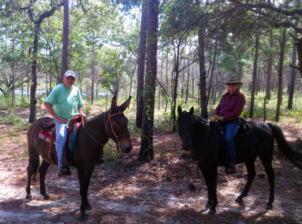 southern trailriders association