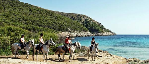 Spain beach riding mallorca