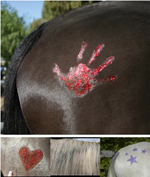 Sparkle paint for horses