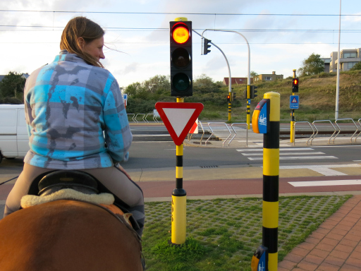Belgium Traffic Signal Buttons for Horseback Riders