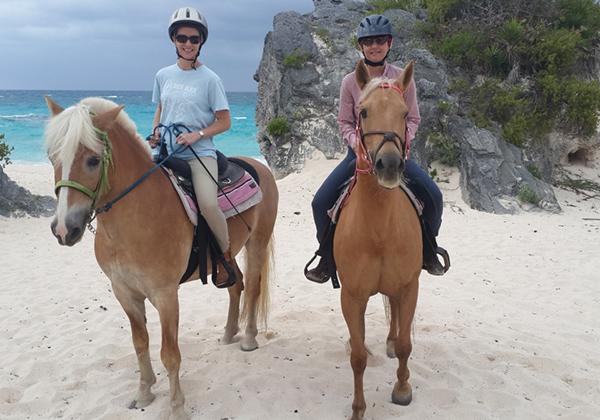 Spicelands Equestrian Centre Bermuda