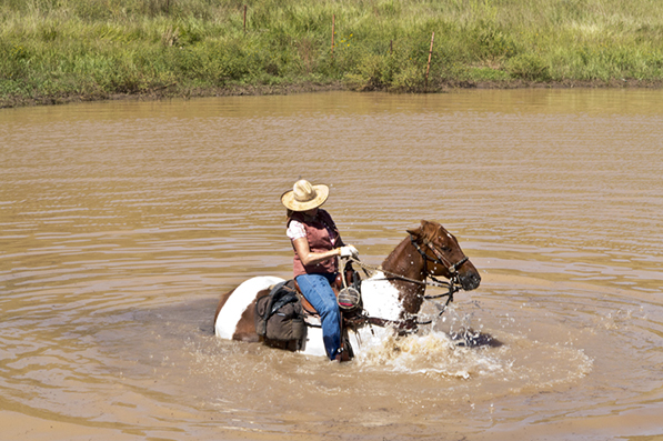 water horseback riding