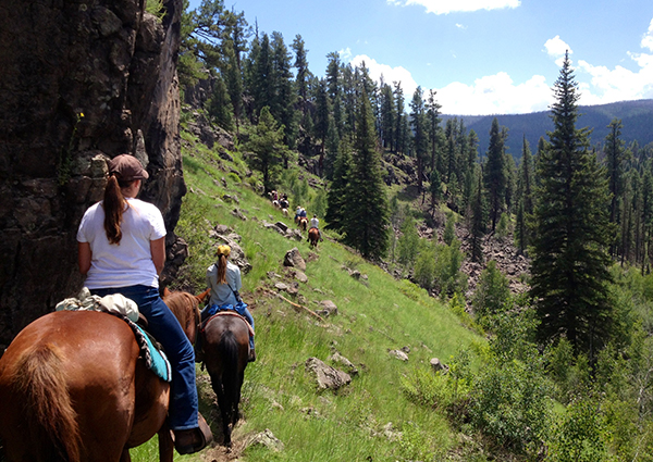 sprucedale guest ranch arizona dude ranches