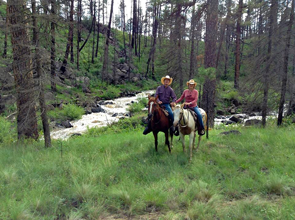 Best ranch horse resort horse ranch north americanhorse for Sprucedale ranch