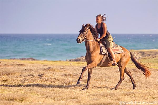 St Lucia Horseback Riding Caribbean