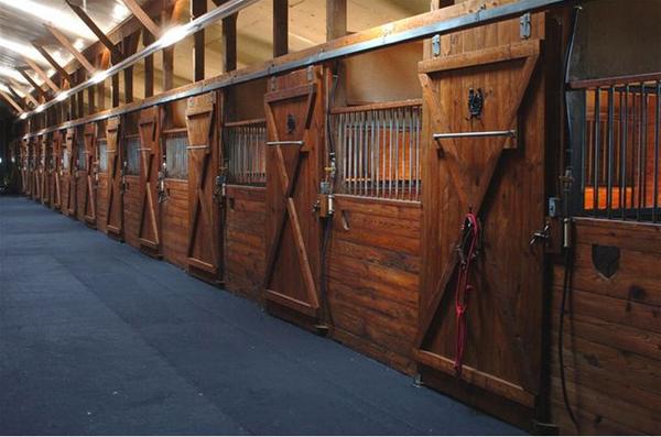 B&B ranch stables new york
