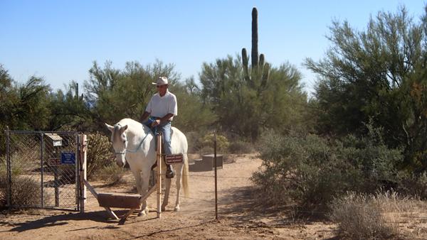 stepover horse trails scottsdale preserve arizona