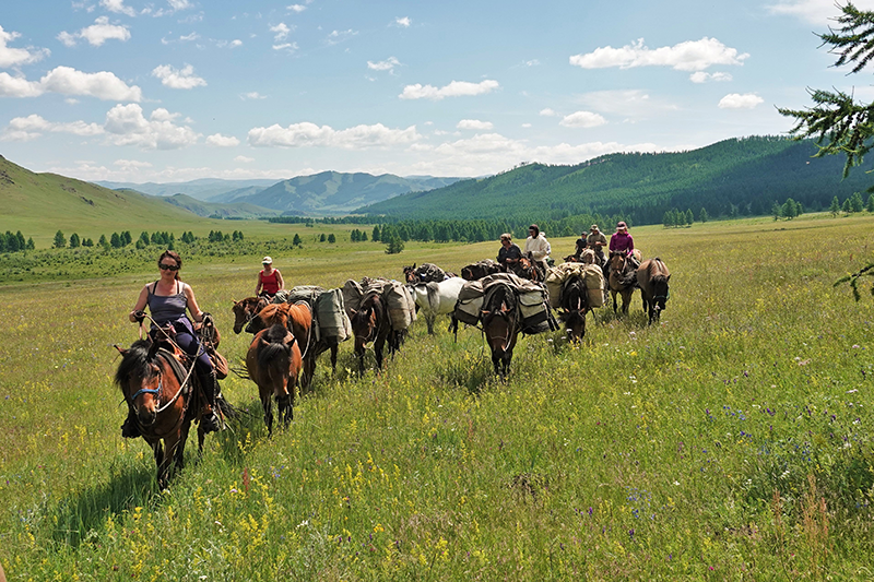 Guest riders enjoy the amazing Mongolian horses and moving along with a herd of pack and saddle horses in a fantastic landscape and great company