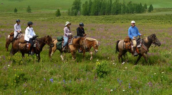 stone horse mongolia horseback riding