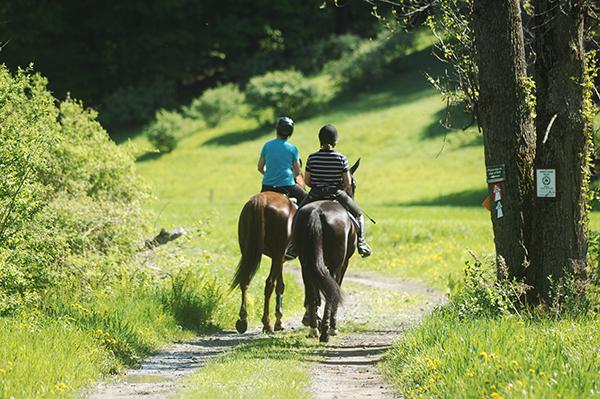 summer days trail riding vermont
