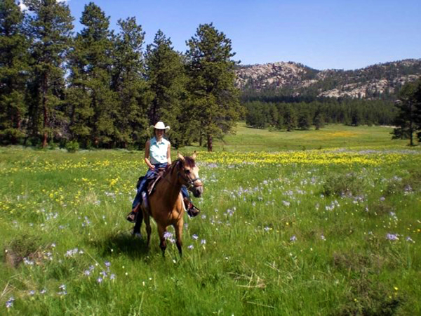 Sundance Trail Guest Ranch Colorado single travelers