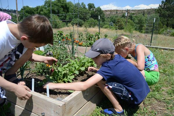 sylvan dale guest ranch garden