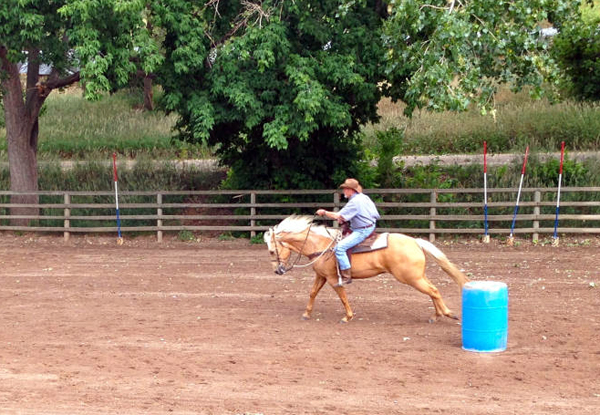 barrel racing sylvan dale ranch