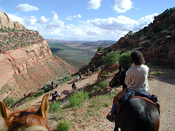 T Bar M Outfitters horse pack trips utah