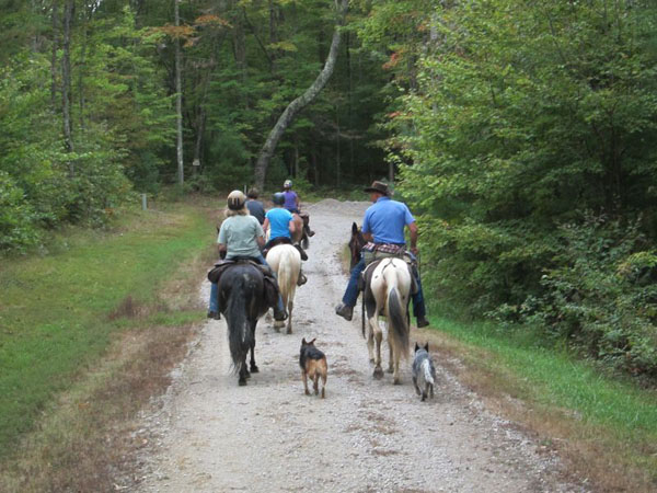Trail Riding Tennessee