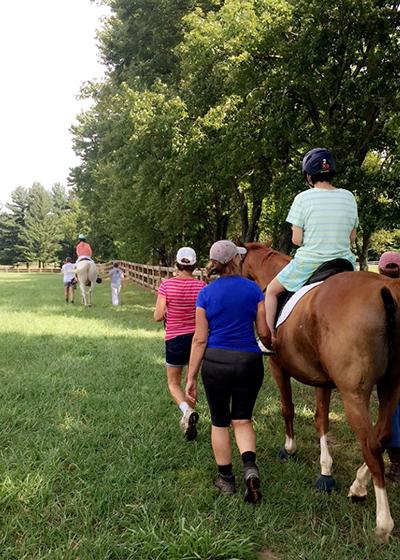 therapeutic riding elevation equitation horses