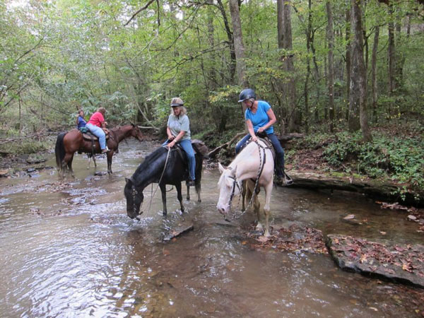 Tennessee Trail RIding at Big South Fork