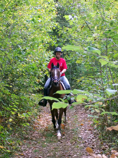 woman trail horseback riding at robinson state park in feeding hills massachusetts